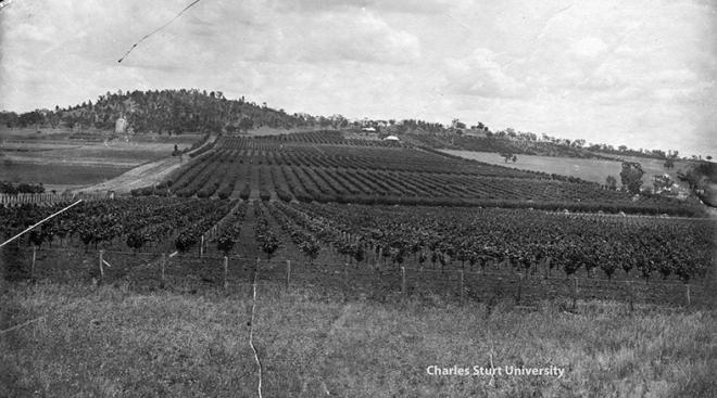 Wagga Experiment Farm