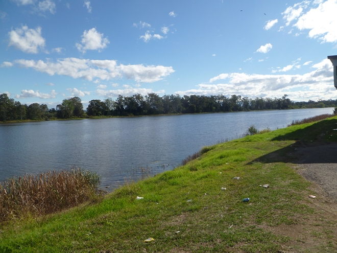 The Clarence River today at the end of Warf Street, Grafton 2016